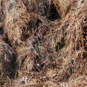 Straw composted 50 percent